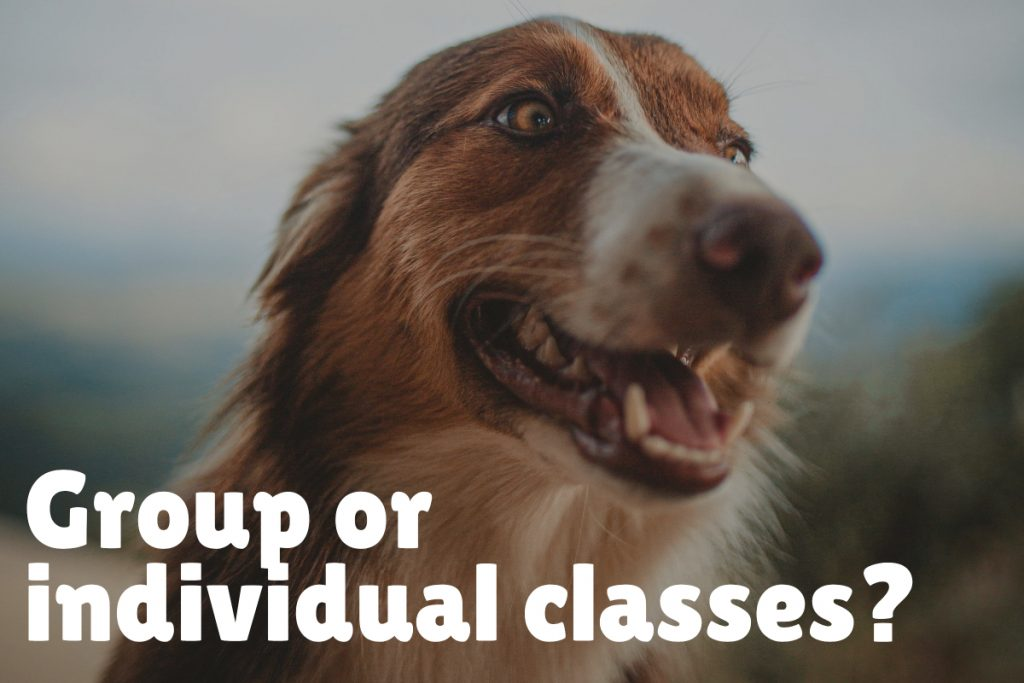 Decide between group or individual classes
