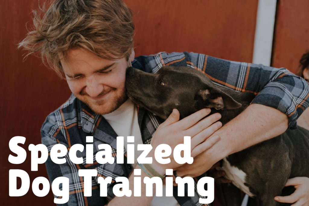 5. Specialized Dog Training