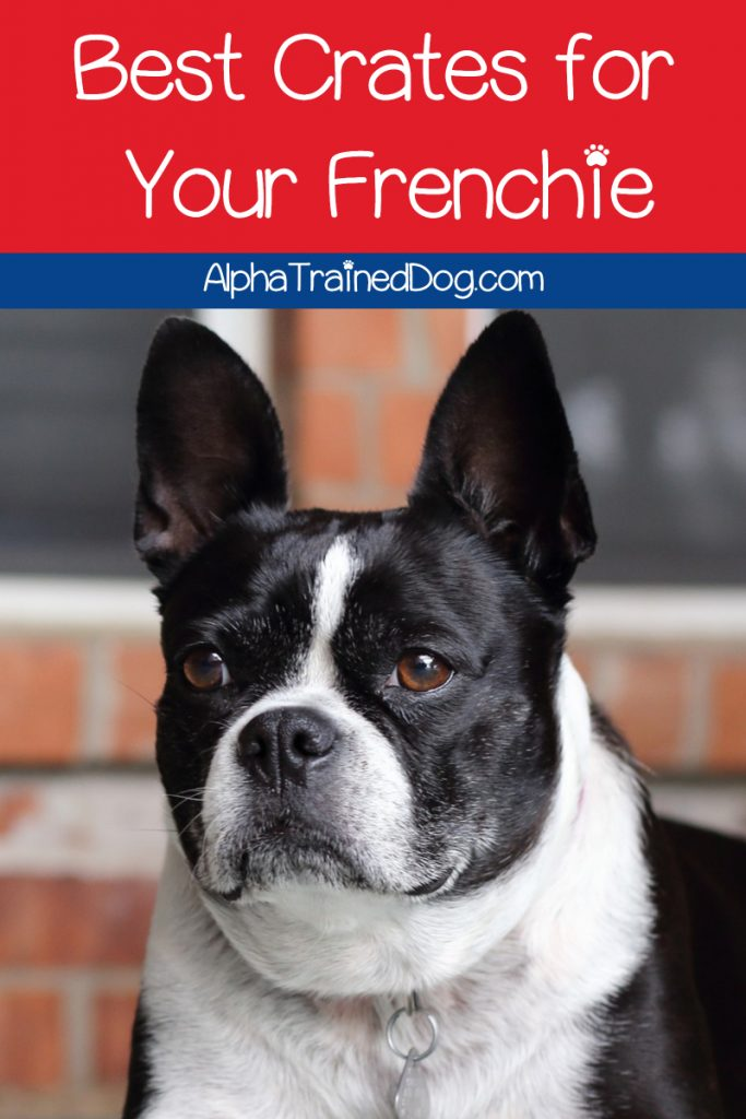 If you're looking for the best crates for French bulldogs, I've got you covered. Check out our top 7 picks, plus learn the right crate size for Frenchies!