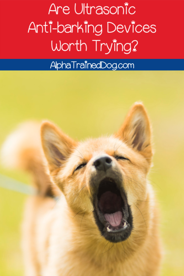 Do ultrasonic anti-barking devices actually work to deter barking? Are they safe? What are the best ones to use? Read on to find out the answers!