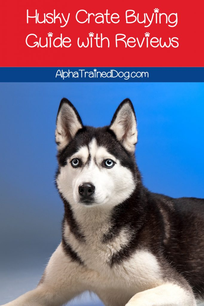 What are the best crates for Huskies? What size should I get? Do I need a puppy crate first? Find out the answers + check out our top 5 picks!