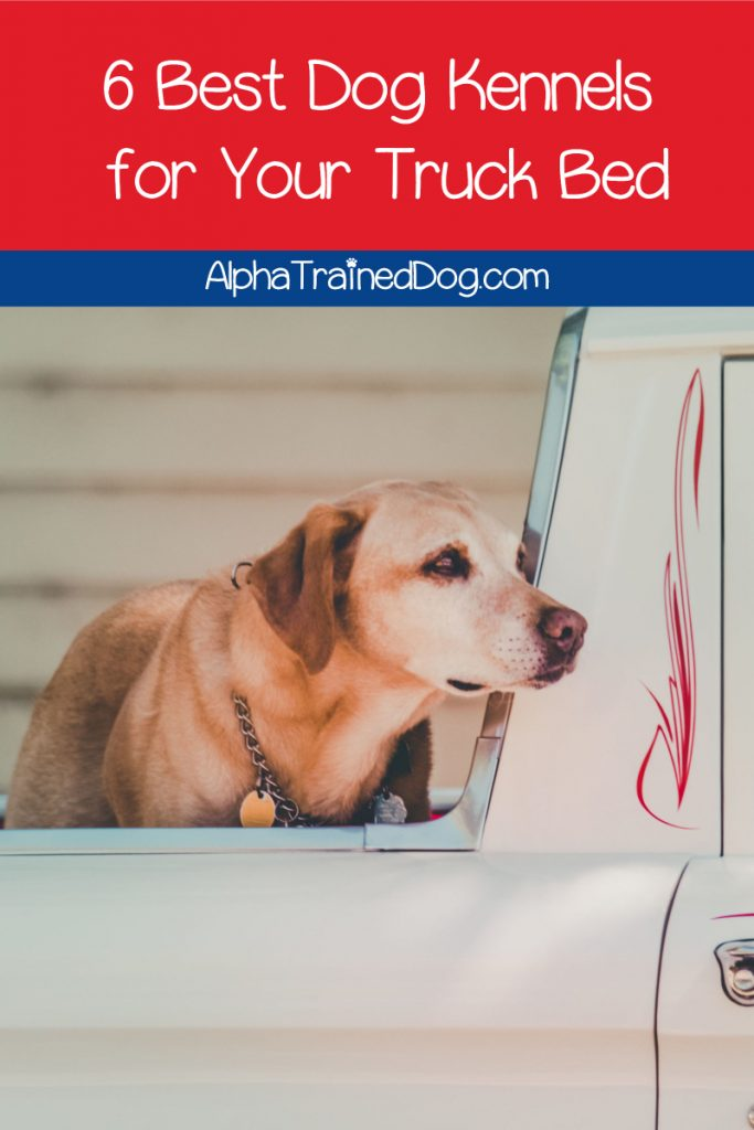 While the back of a truck is usually no place for a dog, these 6 dog kennels for truck beds will keep them safer when they're no other choice. Take a look!