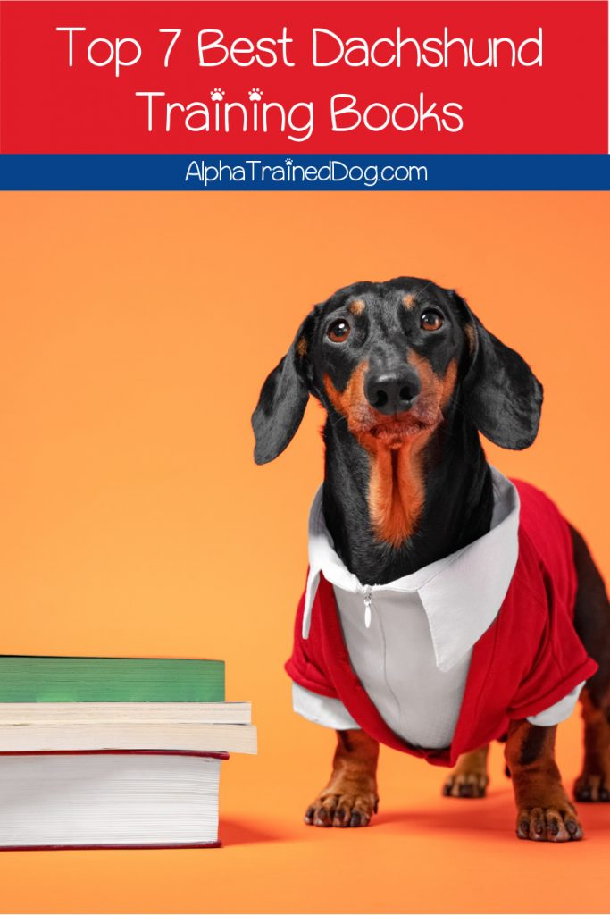If you're looking for the best dachshund training books to help you out with this super stubborn yet oh-so-adorable breed, check out our top picks!